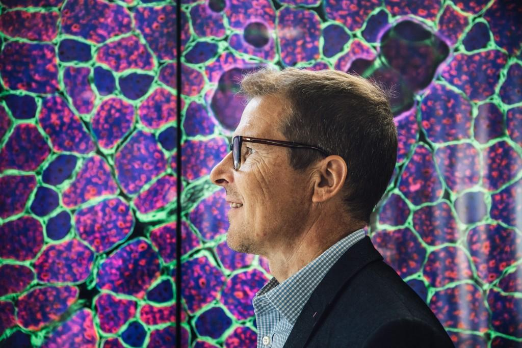 Pictures taken by Aiforia™ can look like artwork. Kari Pitkänen stands in front of a picture of a fluorescent dyed rat's muscle tissue.